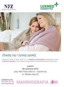 Plakat Luzino